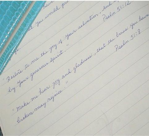 blue journals3