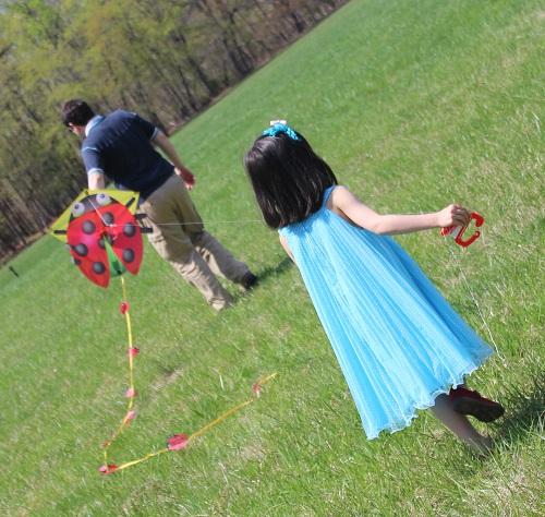 kite festival4