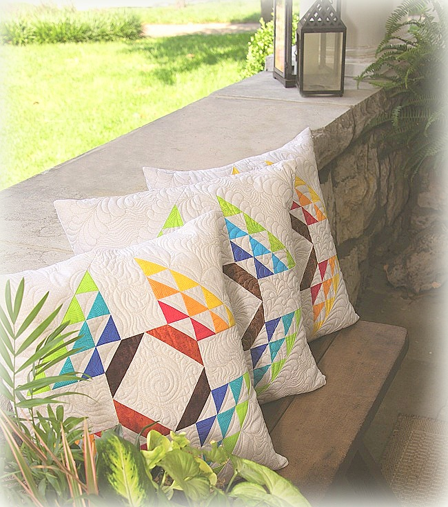 Flight of Colors Pillows